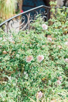 Hummingbird-Nest-Ranch-Blush-White-Summer-Wedding-23