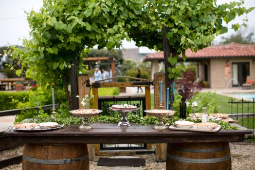 santa-barbara-vineyard-wedding-planner-armenian-63
